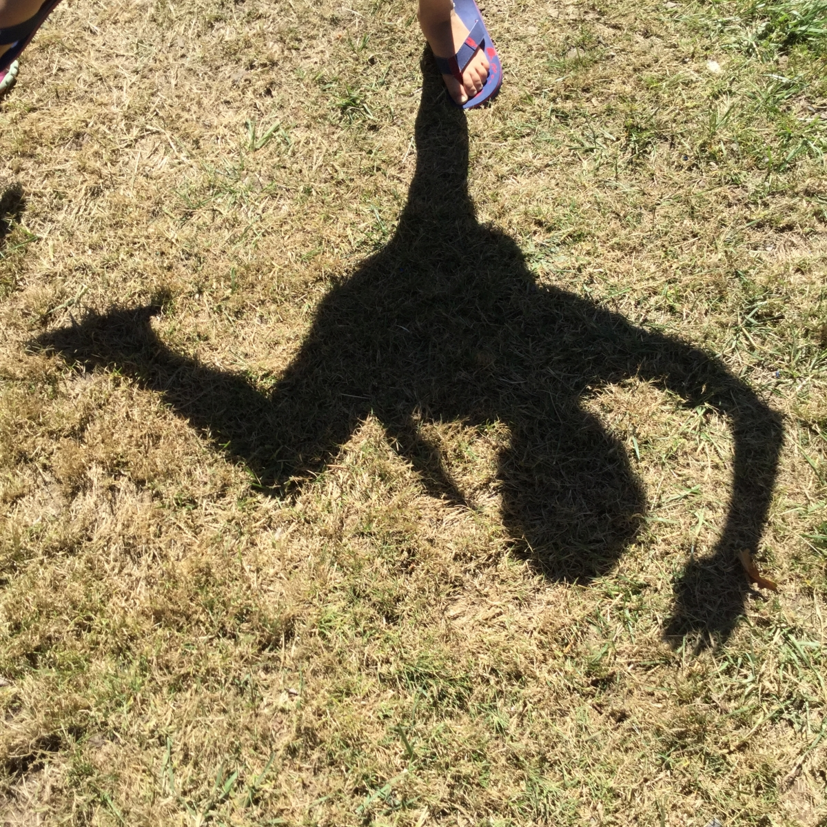 Shadow on the grass of a child who seems to be dancing